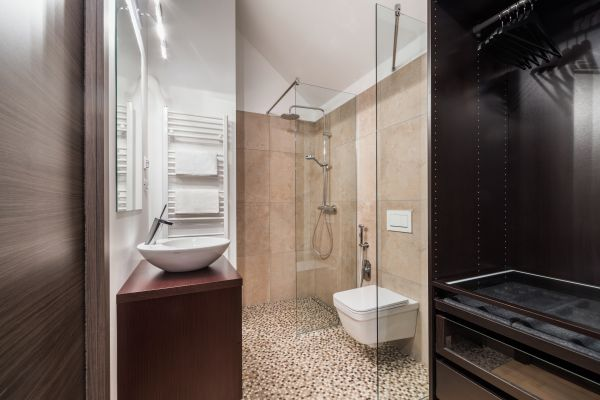 Elegant shower room