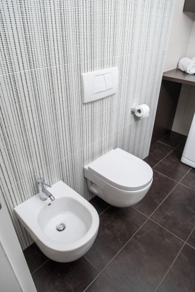 Apartment Bled View lavatory