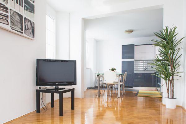 Living room (apartment 2)