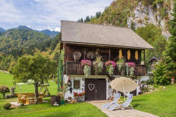 Beautiful garden and storage